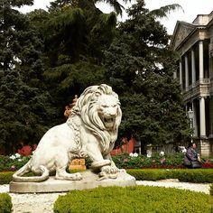 Coade Stone Lion   Jamb Ltd. | Antiques U0026 Dealers | Pinterest | Lion  Sculpture, Lions And Animal Drawings