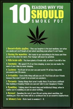How to Grow Pot for medical marijuana patients that want to learn the cannabis growing process. Weed Facts, Smoking Weed, Thing 1, Natural Medicine, Smoke Weed, Herbs, Succulents, Tattoo Ideas, Humor
