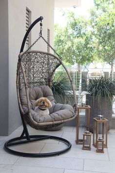 The Egg hanging chair is comfortable, playful and a fun chair that would be a great conversation piece on any porch. The chair creates a relaxing ambience and can be used in almost any area, with a strong frame and durable for any weather. Cool Chairs, Patio Chairs, Pink Chairs, Rattan, Wicker, Garden Furniture, Outdoor Furniture, Restoration Hardware Chair, Sofa Chair