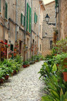 Calle de Valldemosa Mallorca.