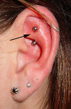 30 Best Piercing Types Images Body Piercing Piercing Types Of Piercings