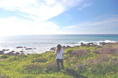 One of my favorite places in Ca, Cambria!  Hearst Castle, b&b's and a beautiful drive up the coast….