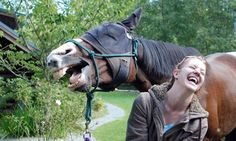 And so I said, why the long face? The girl in this photo appears to be sharing a joke with the horse