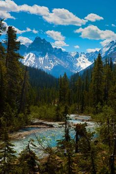 View of the Rocky Mountains seen from Takakkaw Falls in Yoho National Park, British Columbia Canada.