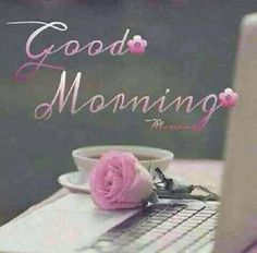 Good morning miss ditto! I hope you slept well and are having an amazing morning! Good Morning Images Flowers, Good Morning Picture, Good Morning Friends, Good Morning Good Night, Morning Pictures, Good Morning Wishes, Morning Greetings Quotes, Good Morning Messages, Morning Quotes