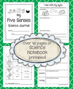 5 senses journal
