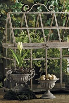 metal greenhouse