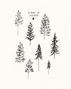 Ideas For Evergreen Tree Tattoo Small Simple Evergreen Tree Tattoo, Pine Tree Tattoo, Tree Line Tattoo, Line Tattoos, Small Tattoos, Unique Small Tattoo, Tatoos, Compass Tattoo, Tattoo Ideas