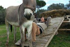 Courtesy: Damiano Biscossi, Donkey Project. Roma (Italy).
