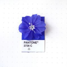 Satisfying Pictures of Found Objects Matched with their Pantone Color | Mental Floss