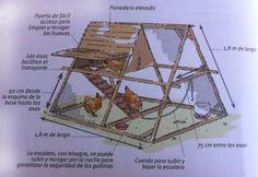 Construir un gallinero móvil para 2 o 3 gallinas   El Correo del Sol