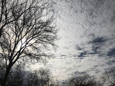 Winter Solstice at noon. (Dynra, Dec 2016)