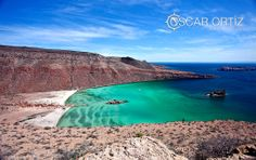 Espiritu Santo #BCSmx #travel #FF Baja California Sur, Fauna, Water, Travel, Outdoor, Santos, Holy Spirit, Islands, Water Water
