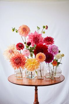 Martha's Flower-Arranging Secrets love the mix of small clear vases and pretty flowers in them (though they will have to be peonies since dahlias aren't in season) Summer Flowers, Fresh Flowers, Colorful Flowers, Beautiful Flowers, Beautiful Bouquets, Tiny Flowers, Flowers In Bloom, Beautiful Pictures, Paper Flowers