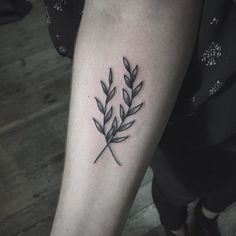 Branches from botanical flash day Thanks for coming Patrycja! If you want to get a tattoo or buy a design contact me on Facebook (link in bio) also on FB in top post you can find all information about bookings, thanks for watching! #romaseverov #poland #warsaw #warszawa #floraltattoo #dotwork #linework #flower #ztsyrena #botanical #plant