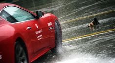 Master GT 2 Days:   two days to improve one's knowledge of granturismo sports driving.