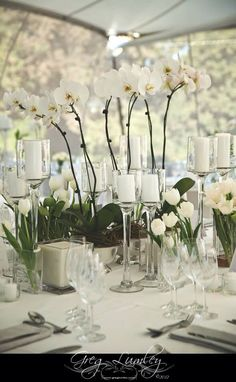 orchids and bees Wedding Table Flowers, Wedding Table Centerpieces, Wedding Boxes, Ceremony Decorations, Flower Decorations, Floral Wedding, Ibiza Wedding, Wedding Ideas, Potted Orchid Centerpiece