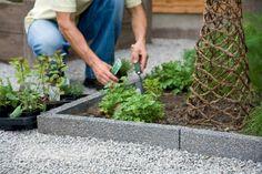 idées de bordures de jardin en béton