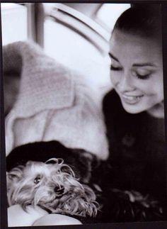 Audrey Hepburn and her yorkie