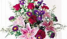 Send Flowers Online, Same Day Flower Delivery Flores Wallpaper Hd, Rose Wallpaper, Pretty Roses, Beautiful Flowers, Colorful Flowers, Short Curly Crochet Hair, Hair Dye For Kids, Wedding Hairstyles For Medium Hair, Lily Bouquet