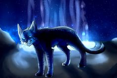 Jayfeather [redraw] by death-dog.deviantart.com on @DeviantArt