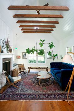 fiddle leaf fig Living Room Farmhouse with chesterfield blue tufted sofa