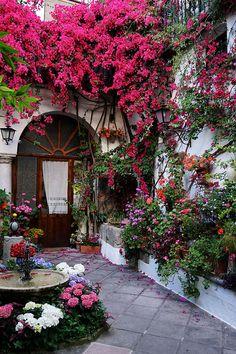File:Colorful Courtyards in Cordoba Spain - Fiesta De Los Patios De Cordoba Spanish Garden, Flower Garden Design, Spanish Style Homes, Small Backyard Landscaping, Landscaping Ideas, Vintage Planters, Beautiful Gardens, Bunt, Outdoor Gardens