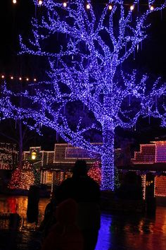 Branson, Missouri - Silver Dollar City Lighted Tree