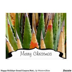 Happy Holidays Grand Canyon National Park Agave Postcard