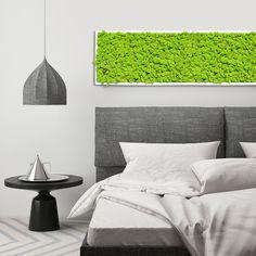 Ein Moosbild von Raumvergrüner über dem Bett. Natur von der man träumen kann - herrlich :) Island Moos, Furniture, Home Decor, Bed, Nature, Decoration Home, Room Decor, Home Furnishings, Home Interior Design