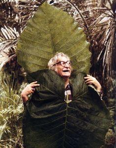 Artista plástico, arquiteto e paisagista Roberto Burle Marx