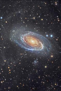 Bodes Galaxy M81