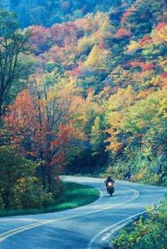 The Drive: Tail of the Dragon The Scene: With 318 curves in 11 miles, US 129 will be the most thrill... - Bill Russ/VisitNC.com