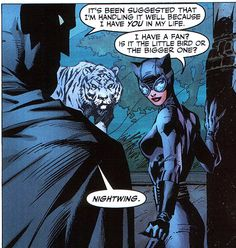 More Batman and Catwoman from Hush