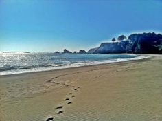 Mendocino County beach