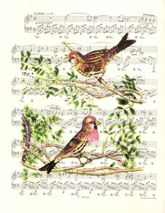 Victorian Era Two Birds Print (1800's illustration), Sheet Music Print, Poster, Unique Gift, Book Art, Dorm Room, Wall Decor, Staging