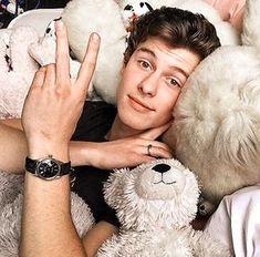Teddy sleeping btwn teddies