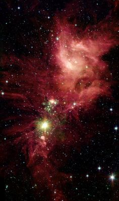 Spitzer/Irac View Of Ngc 2264   Universe Prints
