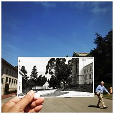1913 in 2013. A hundred years ago the UC Botanical Garden was located where Moffitt Library and Haviland Hall stand now. A conservatory modeled after the Crystal Palace from the 1851 London Great Exhibition was at the center of it all. #cal #ucberkeley #doelibrary #californiahall   Photo from the Blue & Gold (@calyearbook), 1913. And, yes, that's #chancellorbirgeneau walking in 2013.