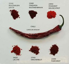 Chili » Colors of nature » Kremer Pigmente GmbH & Co. KG