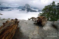 Glacier Point Fog, Yosemite Valley