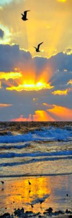 Beautiful Early Morning Beach Sunrise Scenery