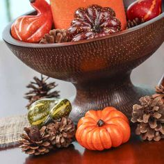 Autumn Gourds and Pinecones