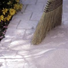 Weed control for paths - sweep rock salt into crevices. But, be careful. It can kill good plants, too.