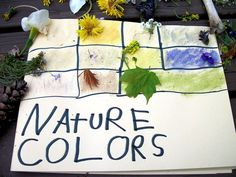 nature colors - so simple, yet bet this could keep a little one busy for a full morning.  Would be neat to compare the colors found in nature for all seasons