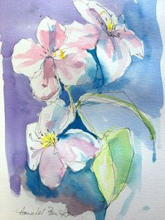 Original Watercolour Painting and Pen 'Clematis'  Signed