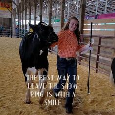 23 ideas dairy quotes cows mom for 2019 Farm Life Quotes, Cow Quotes, Animal Quotes, Country Girl Life, Country Girl Quotes, Show Cows, Show Horses, Fair Quotes, Show Steers