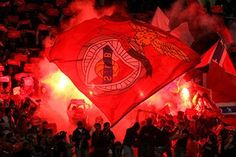 O Benfica Sou Eu Big Love, Love Of My Life, First Love, Benfica Wallpaper, Fc Porto, Sports Clubs, Football Fans, Life Soccer, Painting