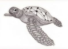 Tangled Sea Turtle 2 001   by The Adventures of Dropstitchknitter