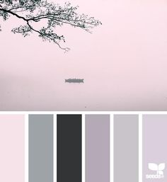 Colour calm